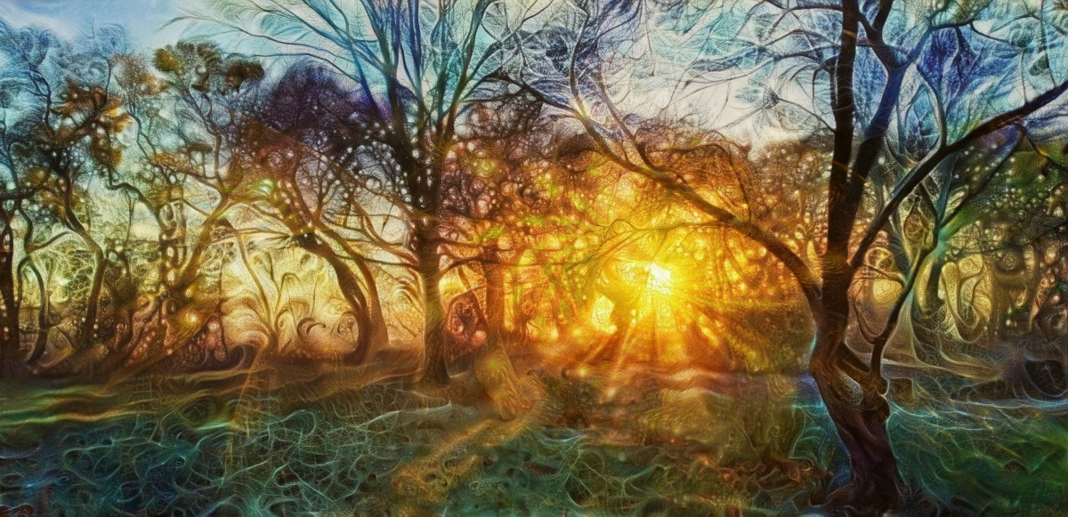 Tryptaminy #3: Houby lesní, houbymořské